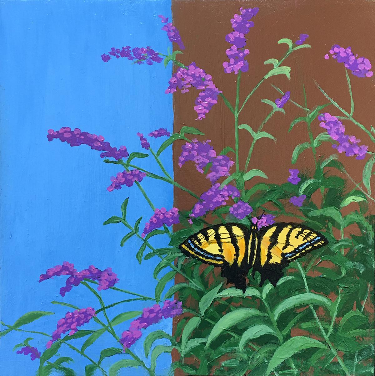 2020-54-ButterflyBush-I